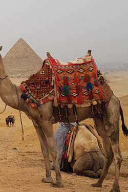 Save Up to $200CAD Per Person - Experience Treasures of Egypt