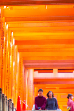 Save Up to $200CAD Per Person - Cultural Treasures of Japan
