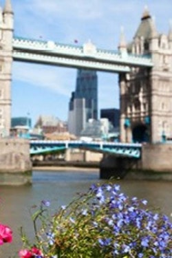 Exclusive: Chelsea Flower Show & Floriade Featuring London & Amsterdam