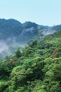 Save 10% on Select 2021 Globus South and Central America Vacations*