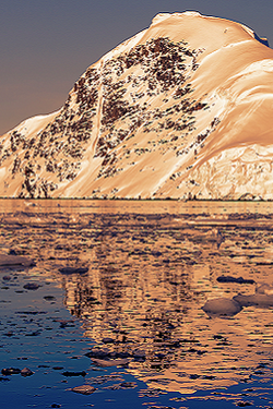 Fly Me to Cruise: Savings + Flight Credits for Antarctica