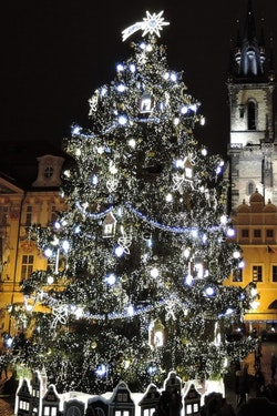 Exclusive: Christmas time on the Danube