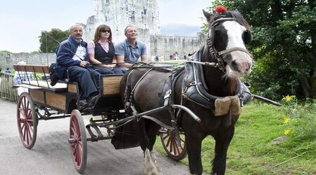 Royal Irish Tours